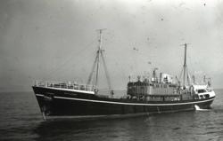 Explorer in Calmer Seas